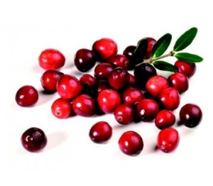 CRANBERRIES-gatineau_nutriactive_omega